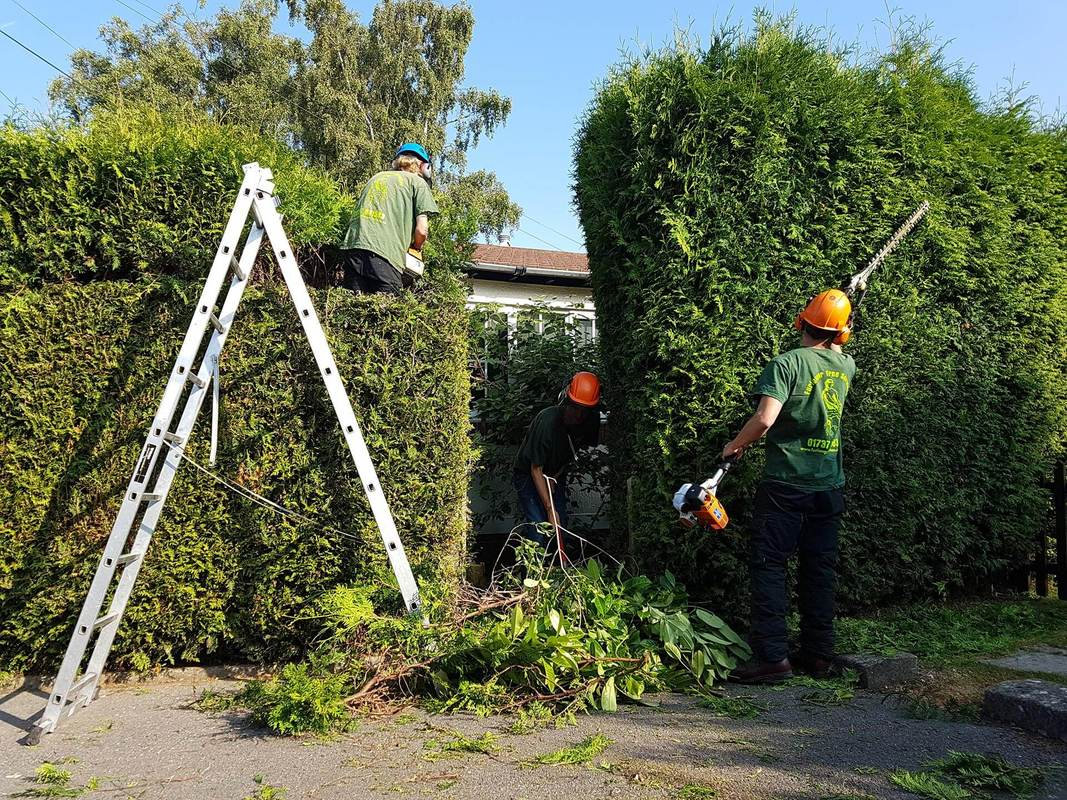 hedge-cutting-Northwich
