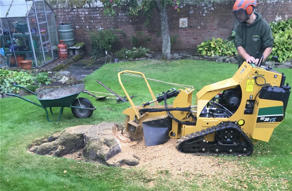 stump-grinding-Northwich