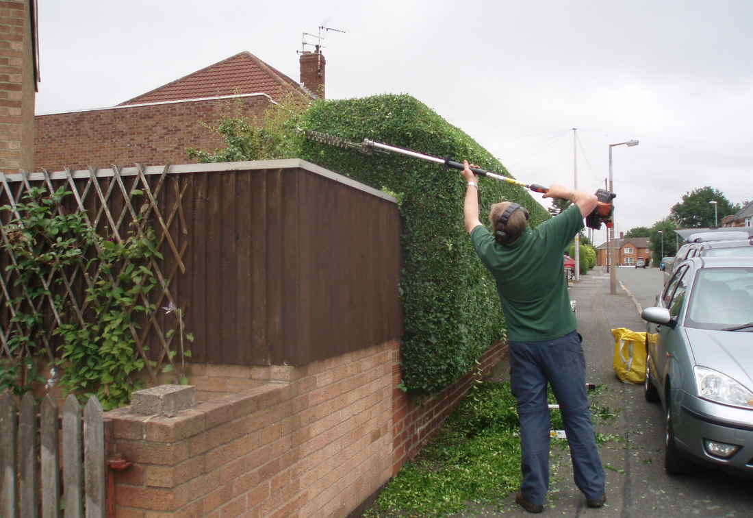 hedge removals Northwich